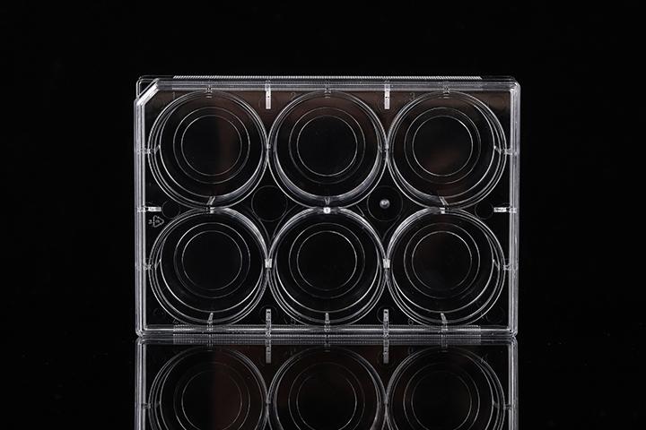 玻底培養皿&玻底培養板