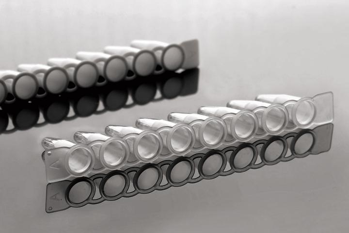 PCR 8联管