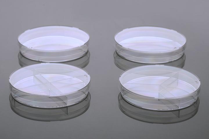 細菌培養皿