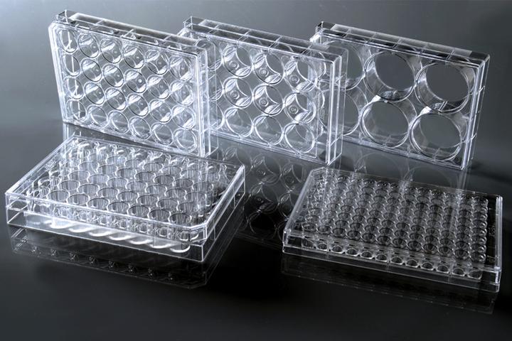 细胞培养板